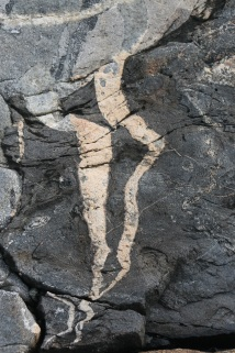 Rock Veins photo by Lyn Hoopes